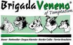 Brigada Veneno