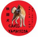 Akita Yamashida San