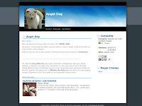 Canil ANGEL DOG