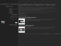 Canil Landflyers Papillon Kennel