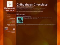 Canil Chihuahuas Chocolate